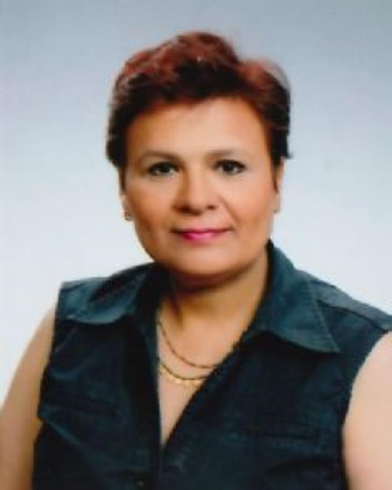 Doç. Dr. Hatice Kübra Ensert